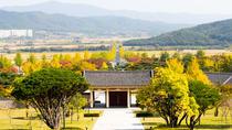 Memorable Korean Autumn Foliage Random Tour (From Busan)