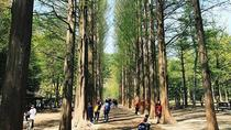 Nami Island, Petite France, Rail Bike and Garden of Morning Calm Tour, Seoul, Day Trips