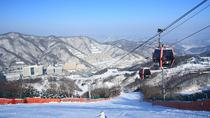 Winter Fun at Vivaldi Ski Resort with Romantic Winter scenery at Namiseom Island, Seoul, Romantic...