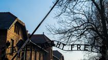 Auschwitz Birkenau and Wieliczka Salt Mine- Full Day Tour with Private Transport, Krakow, Full-day ...