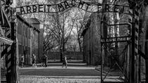 Auschwitz Birkenau Memorial and Museum Guided Tour from Krakow, Krakow, Day Trips