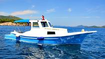 Private boat Tour - Dubrovnik Old Town and Elaphite islands, Dubrovnik, Boat Rental