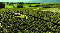Craft Beer & Strawberry Maze Adventure, Garden Route, Attraction Tickets