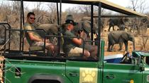 Conservation Awareness Tour, Victoria Falls, Nature & Wildlife