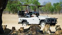 Hwange National Park Day Trip from Victoria Falls, Victoria Falls, Day Trips