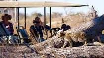 Private Game Drive and Chobe River Cruise, Kasane, Day Cruises