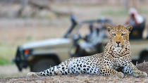 Victoria Falls Guided Game Drive, Victoria Falls, 4WD, ATV & Off-Road Tours