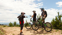 Beginner Downhill Mountain Biking Lesson in Christchurch, Christchurch
