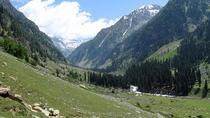 4 Star luxury Kashmir Package including Dinner, Srinagar, Private Sightseeing Tours
