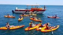 Ponta da Piedade Kayak Tour from Lagos, Lagos, Kayaking & Canoeing