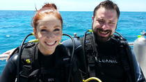 2-Location Dive Charter from Tavernier, Key Largo, Scuba Diving