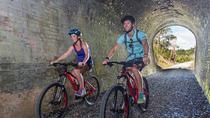 2-Day Full Twin Coast Cycle Trail Bike Experience, Bay of Islands, Bike & Mountain Bike Tours