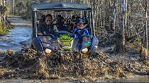 Tour UTV no Big Cypress National Preserve de Miami, Miami, 4WD, ATV & Off-Road Tours