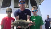 Half-Day Fishing Trip from Cape May, Cape May, Fishing Charters & Tours