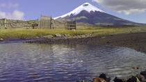 Private Sightseeing Tour of Cotopaxi National Park, Quito, Day Trips