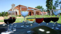 Bouza Winery Lunch, Montevideo, Wine Tasting & Winery Tours