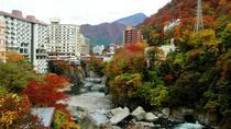 Nikko City Area Pass, Tokyo, Day Trips