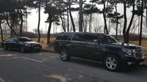 Traslado privado de llegada: Aeropuerto de Incheon a Seúl Hoteles, Seoul, Private Transfers