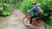 5-Hour Small-Group Vancouver Bike Tour, Vancouver, Bike & Mountain Bike Tours