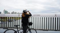Small Group Guided Morning Bike Tour of Seoul and the Han River, Seoul, Bus & Minivan Tours