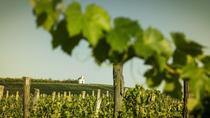 Full-day tour of Tokaj - The World's First Closed Wine Region, Budapest, Wine Tasting & Winery Tours