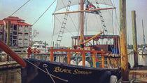 Hilton Head's Pirate Ship Dolphin Tour, Hilton Head Island, Day Cruises