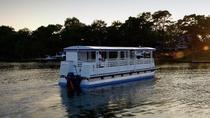 Vanishing Island Dolphin Tour, Hilton Head Island, Dolphin & Whale Watching