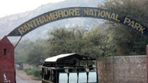 Same Day Trip to Ranthambore, Jaipur, Day Trips