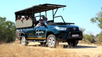 Premium Half-Day Kruger Park Private Safari , Kruger National Park, Safaris