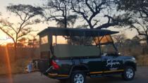 Premium Kruger Park Afternoon Sunset Safari, Kruger National Park, Day Trips