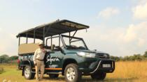 Premium Kruger Park Half Day Safari, Kruger National Park, Day Trips