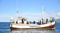 Fishing Tour in kleiner Gruppe mit Gourmet-Mittagessen in Reykjavik, Reykjavik, Fishing Charters & Tours