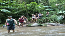 Full Day Private: Trekking Chiang Dao Area & Sticky Waterfall from Chiang Mai, Chiang Mai,...