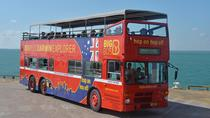 Hop-on-Hop-off-Tour im Bus durch Darwin, Darwin, Hop-on Hop-off-Touren
