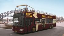 Sydney Shore Excursion: Big Bus Sydney and Bondi Hop-On Hop-Off Tour