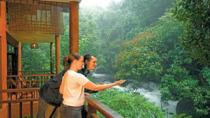 A Unique Rainforest Escape - 3 Nights At Vythiri Resort From Cochin With Private Transfers, Kochi,...
