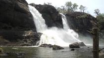 Athirapilly and Vazhachal Falls from Kochi with Lunch, Kochi, Attraction Tickets