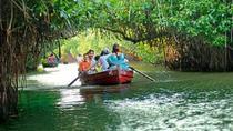 Day Trip to Pichavaram Mangrove Forest and Nataraja Temple in Chidambaram from Pondicherry,...