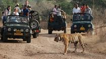 Ranthambore National Park - A Two Night Wildlife Adventure From Jaipur By Private Transfer, Jaipur,...