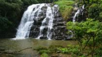 The Beauty And Culture Of Coorg - From Bangalore With Private Transfer, Bangalore, Multi-day Tours
