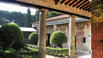 Pompeii Ruins Day Tour from Rome, Rome, Overnight Tours