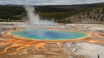 Grand Teton and Yellowstone, Salt Lake City, Multi-day Tours