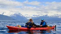 A Taste of Nature Kayak and Gourmet Food Adventure, Juneau, Day Trips