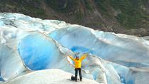 Juneau Shore Excursion: Mendenhall Glacier Trek, Juneau, Ports of Call Tours
