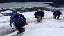 Mendenhall Glacier Trek and Climb, Juneau, Custom Private Tours