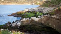 Private Tour: Customizable San Diego Sightseeing, San Diego
