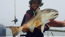 Half-Day Private Fishing Trip from Galveston, Galveston, Fishing Charters & Tours