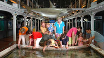 Key West Aquarium, Key West, Museum Tickets & Passes