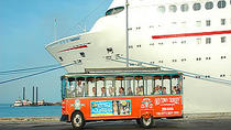 Key West-kustexcursie: Key West hop-on hop-off trolleybustour, Key West, Cruises langs havensteden