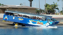 San Diego Shore Excursion: San Diego Seal Tour, San Diego, Day Cruises